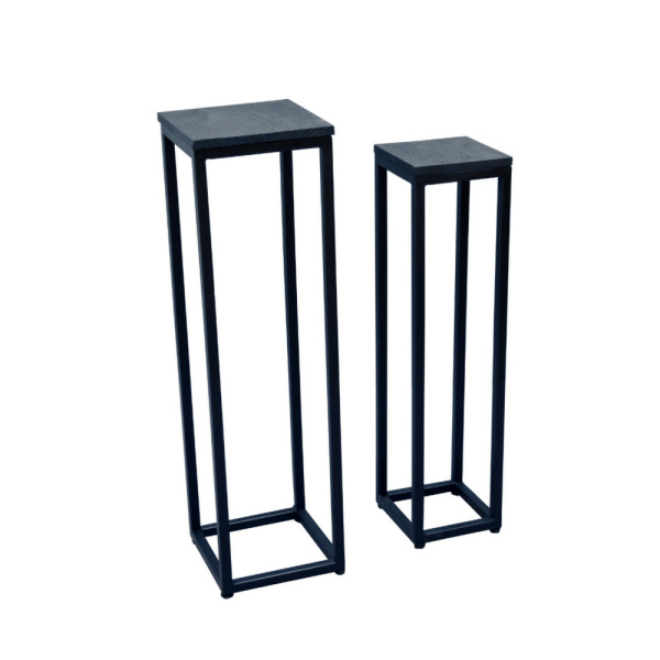 Plantenstandaard - set van 2 - zwart staal