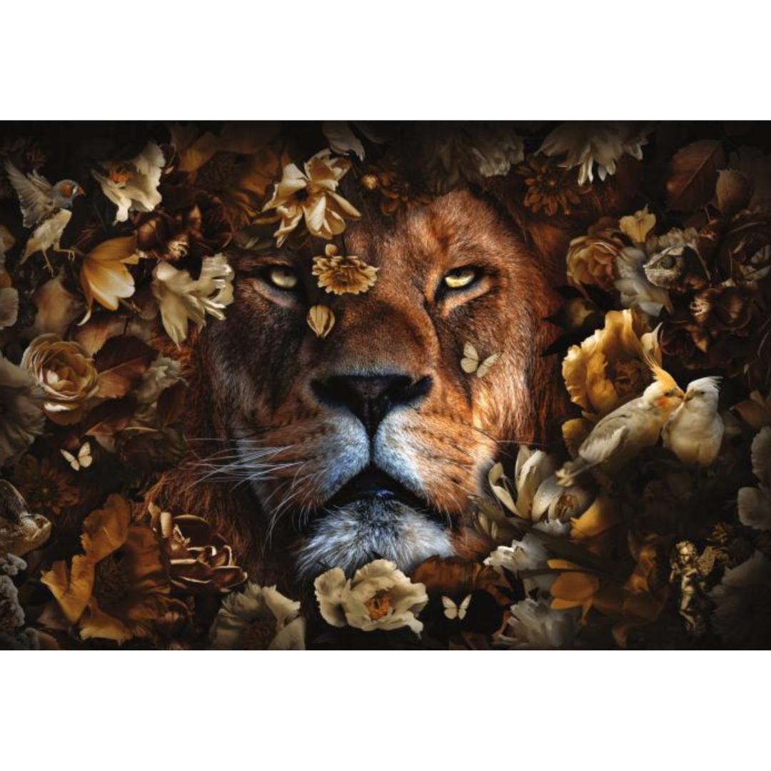 glasschilderij - leeuw