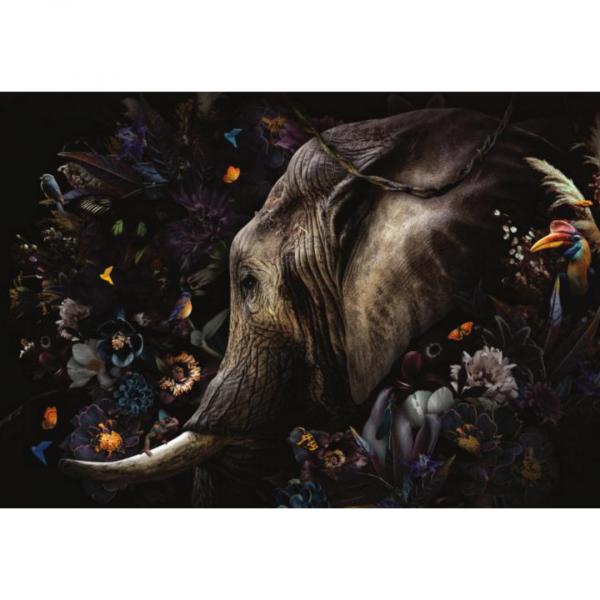 glasschilderij - olifant